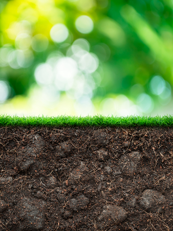 Soil with grass in green blur background Stock Photo
