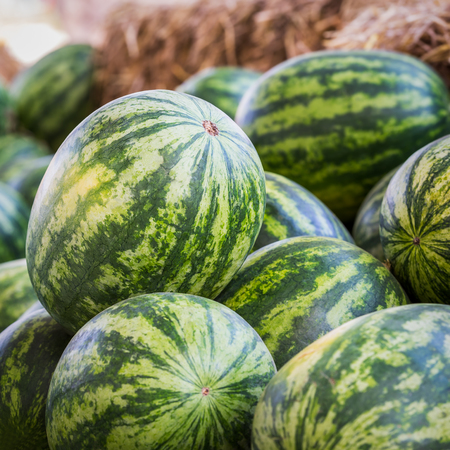 Heap of watermelons at market