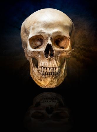 어두운 리플 연기 배경에 인간의 두개골