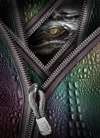 Wild crocodile eye and leather with zipper in concept of killer for business Stock Photo