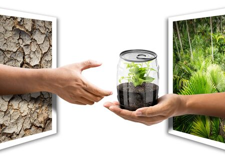 give out: Hold out the hand from photo paper to give the plant internal transparency can in concept of natural conserve