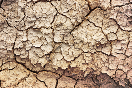 soil texture: Cracked soil for background and texture material Stock Photo
