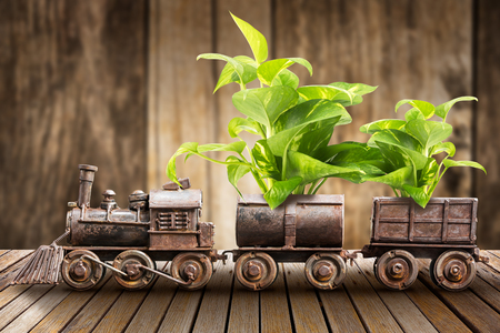 Houseplant inside model of the ancient steel train for decoration on wooden table