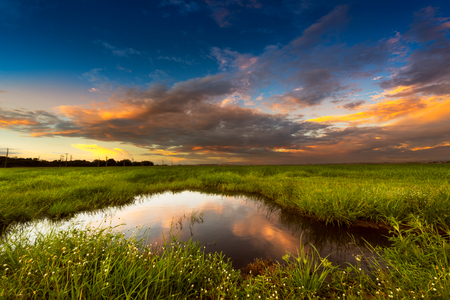 gloaming: Soft and motion blur blue sky in sunset time with meadow at the rural scene