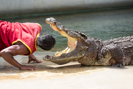 태국의 Samut Prakan 농장에서의 악어 쇼