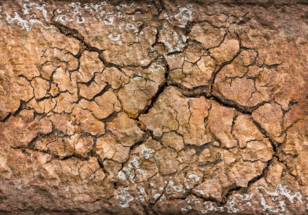 Cracked soil for background and texture material Stock Photo