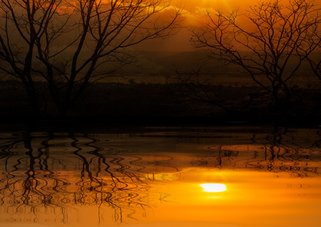 Landscape of rural scene in sunset time reflection on water