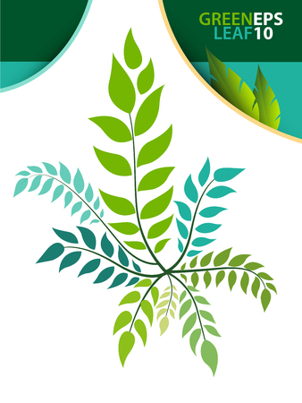 Green leaf template for environment preserve concept in illustration vector style  イラスト・ベクター素材