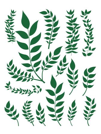 Ensemble de feuilles de plantes pour la conception matérielle dans la conception plate de vecteur d'illustration