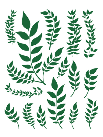 Plant leaf set for material design in illustration vector flat design