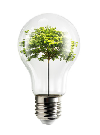 Tree stuff internal electrical light bulb in concept of renewable natural energy isolated on white background with clipping path