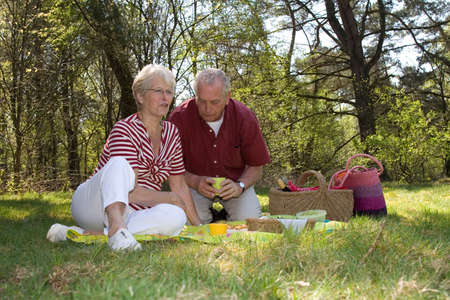 pic nic: Elderly couple enjoying a leisure pic nic outdoors in the field Stock Photo