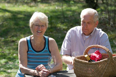 pic nic: Lovely elderly couple on a summer pic nic in the park