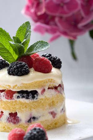 mascarpone: Delicious layered dessert filled with fresh fruits and mascarpone cream Stock Photo