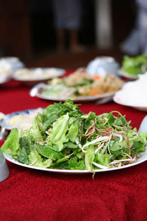 beansprouts: Freshly made salad served on a plate with green leaves and beansprouts Stock Photo