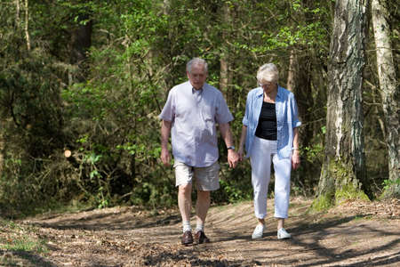 Handsome senior couple walking in the forest on a sunny afternoon