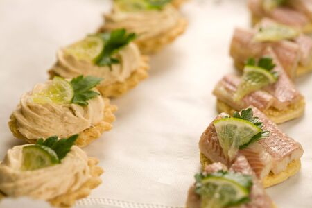 crudite: Fresh toast with fish; tuna and eel with small piece of lemon Stock Photo