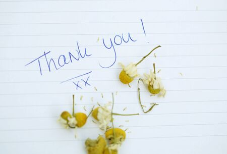 thank you note: Small thank you note with chamomille flowers Stock Photo