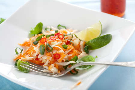 Delicious vietnamese carrot salad with lime and cabbage Stock Photo - 4750981