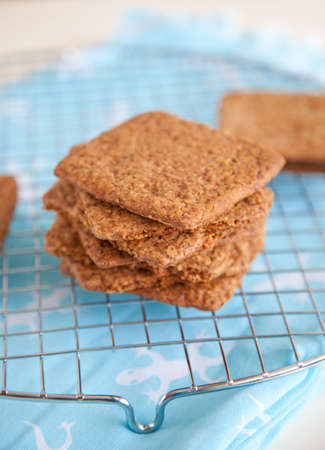 graham: Delicious freshly baked graham crackers on a cooling rack