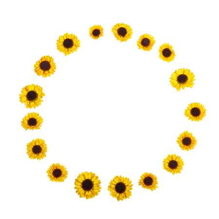 The combination of colors. A wreath made of yellow flowers on a white background. Spring, summer, top view