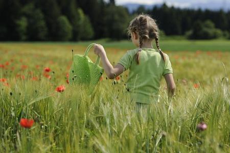 Cute child girl in poppy field