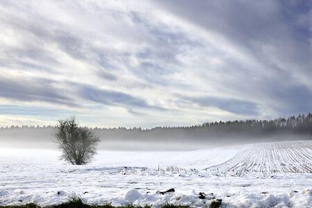An outdoor photo of winter landscape beauty