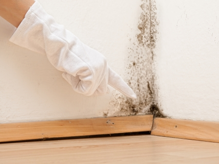 Mold in flat