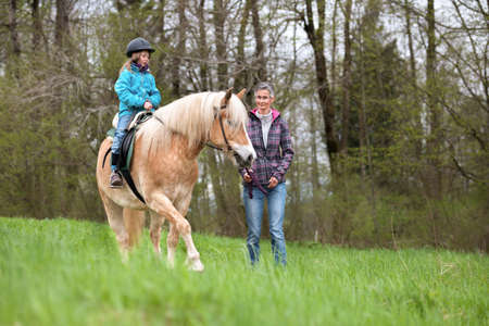 Riding lessons, riding instructor