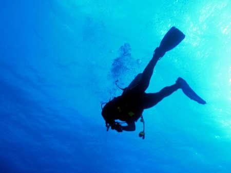 free diver: diver