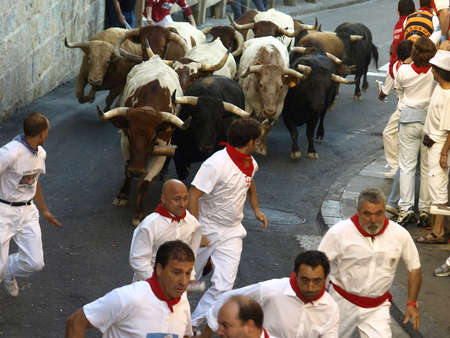 running of the bulls in Pamplona  Navarre