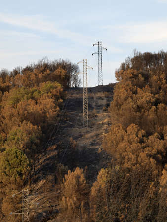 navarre: forest fire landscapes in Aras  Navarre  Stock Photo