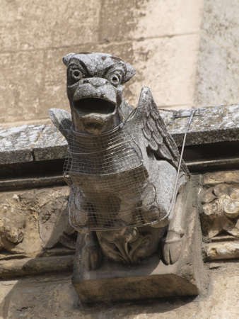 castilla: gargoyles in the cathedral of Leon in Castilla