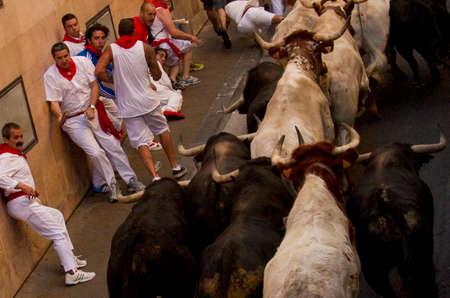 navarre: running of the bulls in San Fermin in Pamplona  Navarre