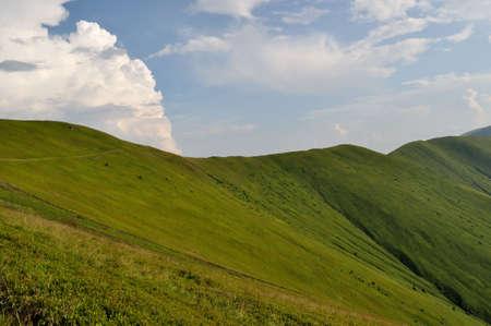 ridges: Pendii di cresta coperti di erba verde e nuvoloso cielo blu