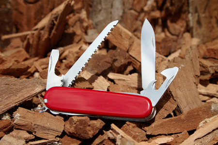 temperino: old scratched knife, open red penknife on the sawdust