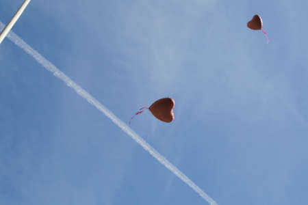 red heart balloons flying into the  blue sky