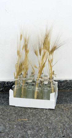 bocaux en verre: Pointes dans des bocaux en verre