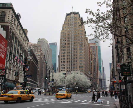 a place of life: New York, USA