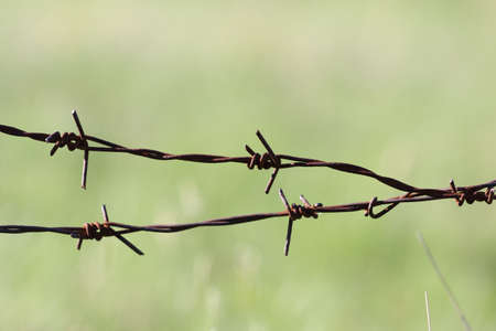 barbed Wire Stock Photo - 17692038