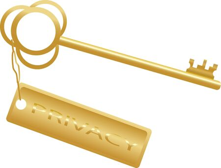 golden key concept privacy on a white, vector photo
