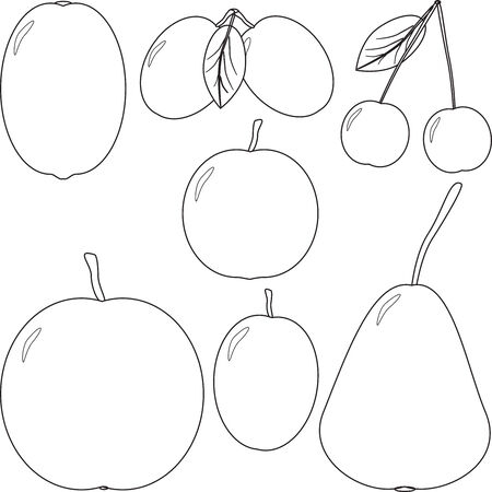set of the vector illustrations silhouettes images of fruit and berries