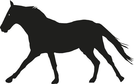 The horse in motion, the silhouette in black Vector