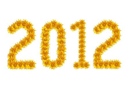 sun flower in newyear. photo