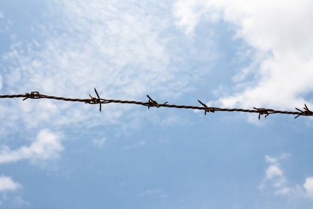 Barb wire against blue sky Stock Photo - 13365682
