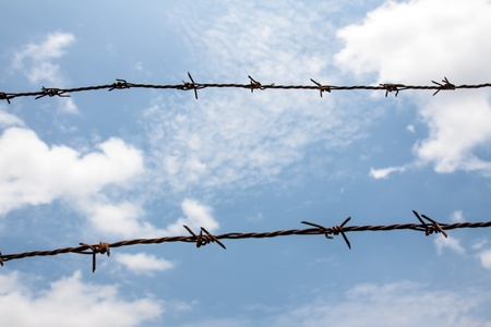 Barb wire against blue sky photo