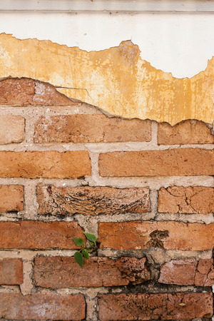 texture of old wall Stock Photo