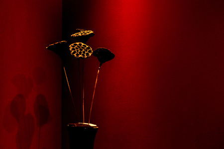 Dry floral decoration in vase to red wall photo