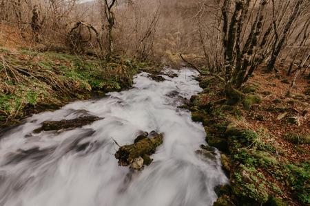 The Ravnjak river, Montenegro - Image