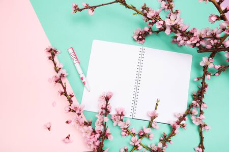 mock up notebook and sprigs of the apricot tree with flowers on pastel colour background . Place for text. The concept of spring came, happy easter, mother's day.Top view.Flay lay. Copy space. Stockfoto
